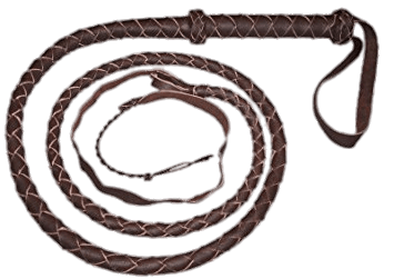 Whip clipart transparent. Brown png stickpng