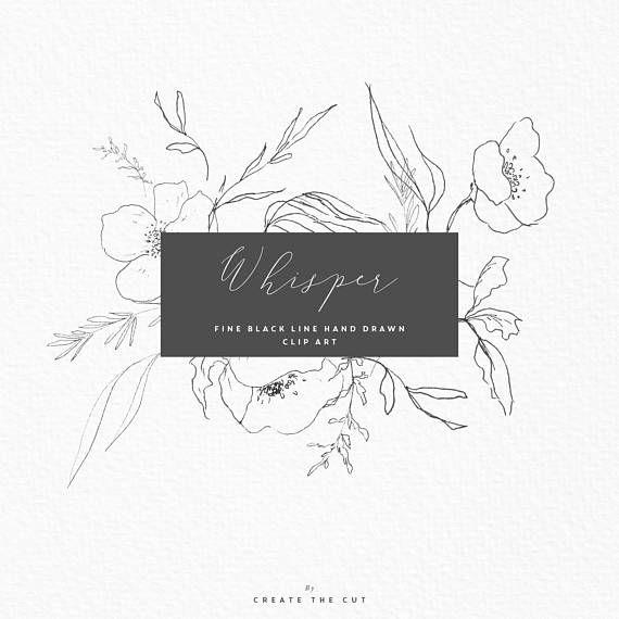 Watercolour flower fine hand. Whisper clipart in line