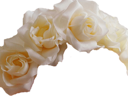 White flower crown png.  for free download