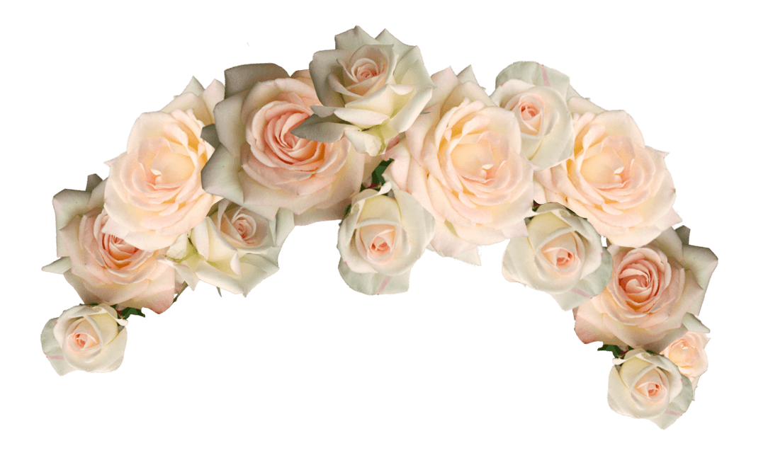 for free download. White flower crown png
