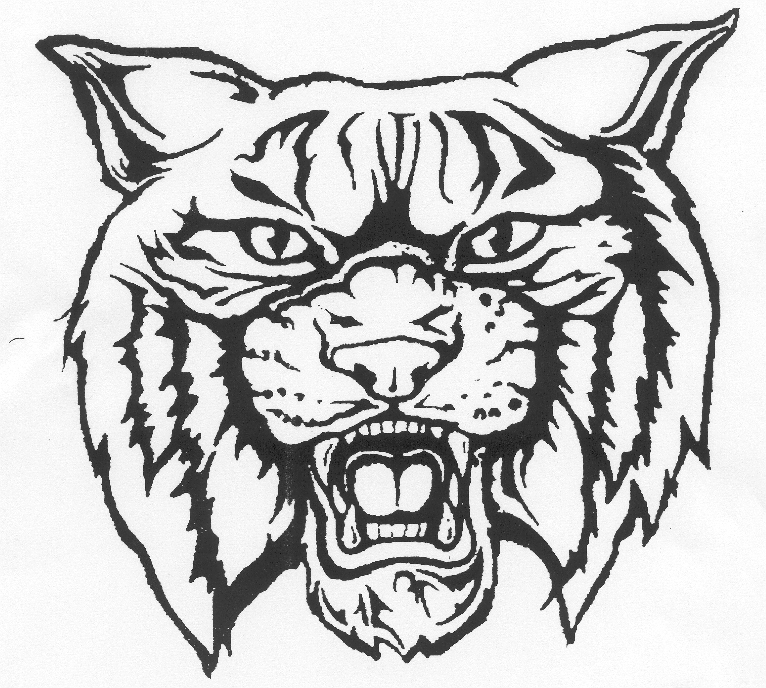 Awesome collection digital h. Wildcat clipart