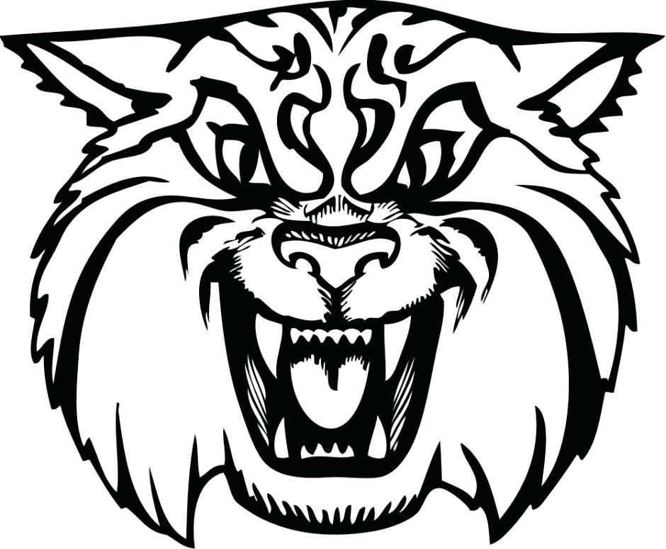 Drawing at getdrawings com. Wildcat clipart