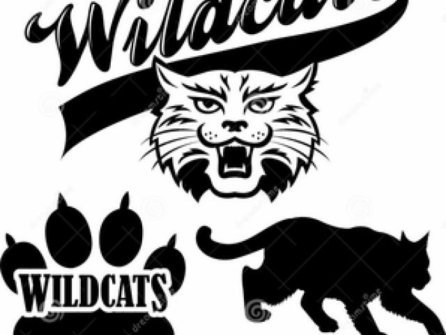 Free download clip art. Wildcat clipart black gold