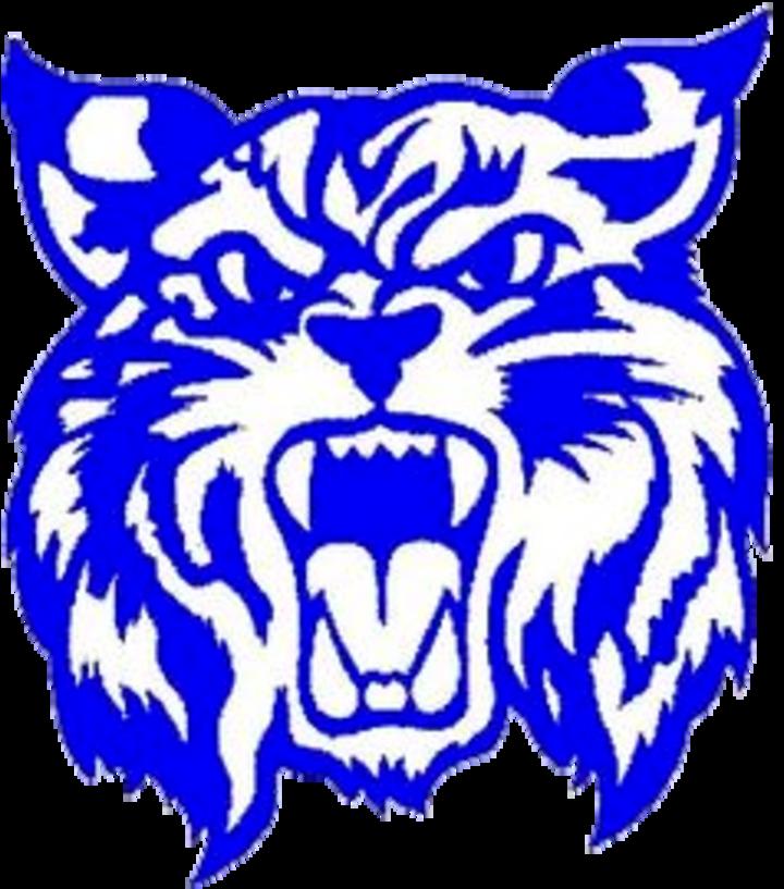 Wildcat clipart bobcat. The rauner college prep