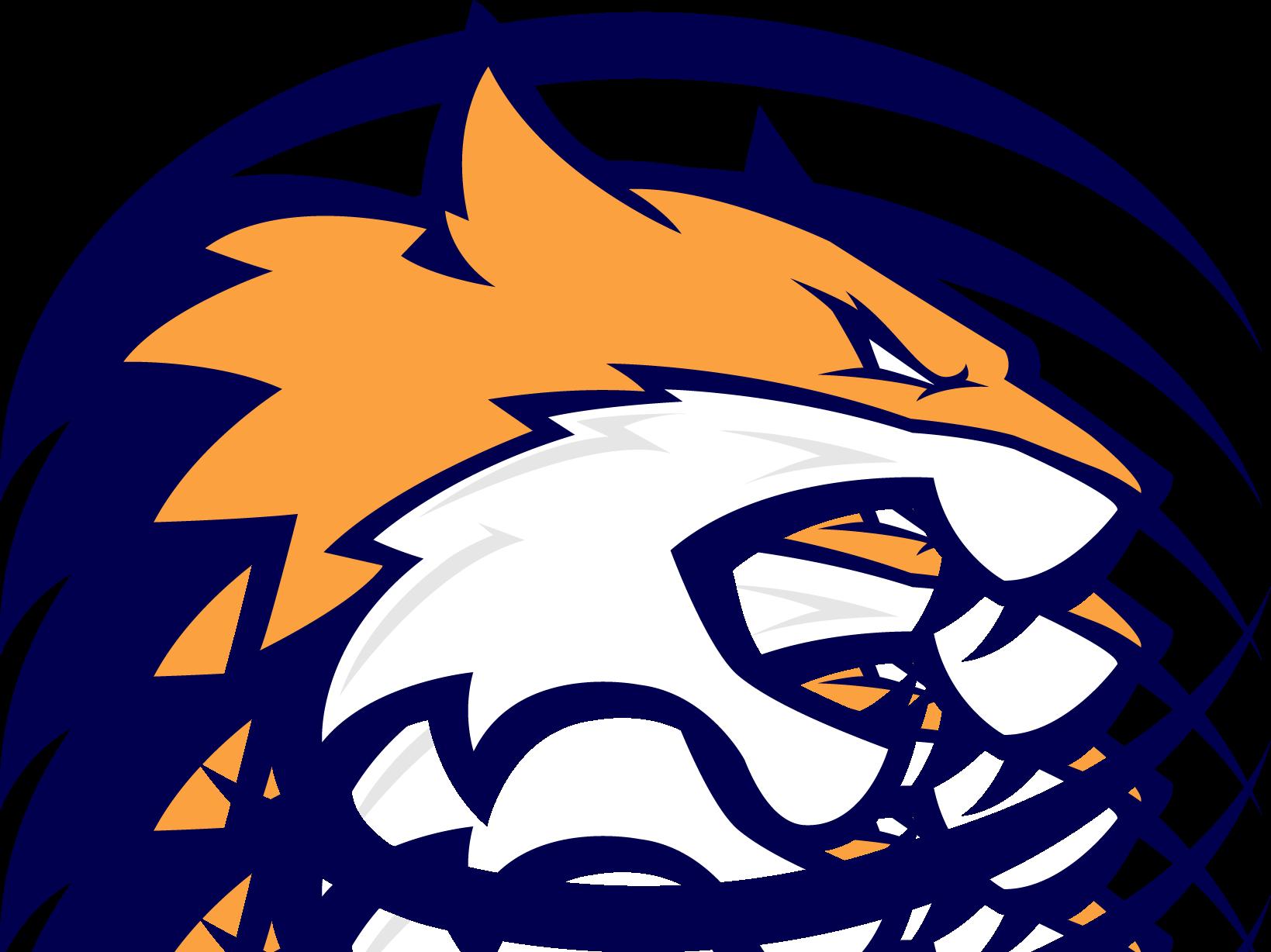 Wildcat clipart bobcat football. Worcester wildcats