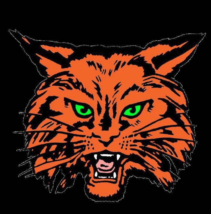 Texas high school baseball. Wildcat clipart calallen