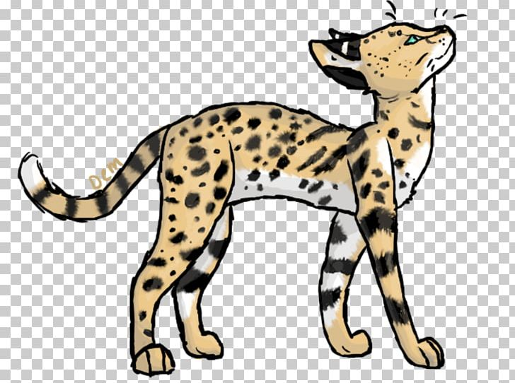 Wildcat clipart cheetah. Whiskers leopard png animal