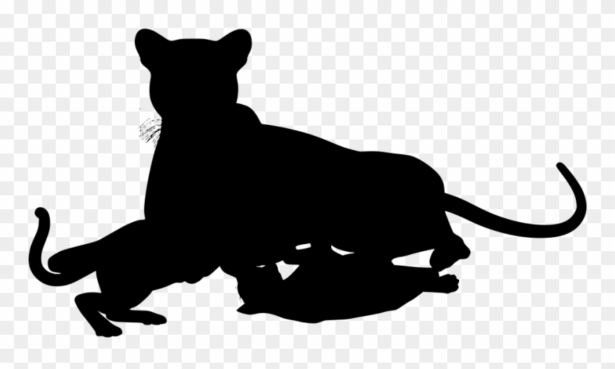 Png download pinclipart . Wildcat clipart cheetah