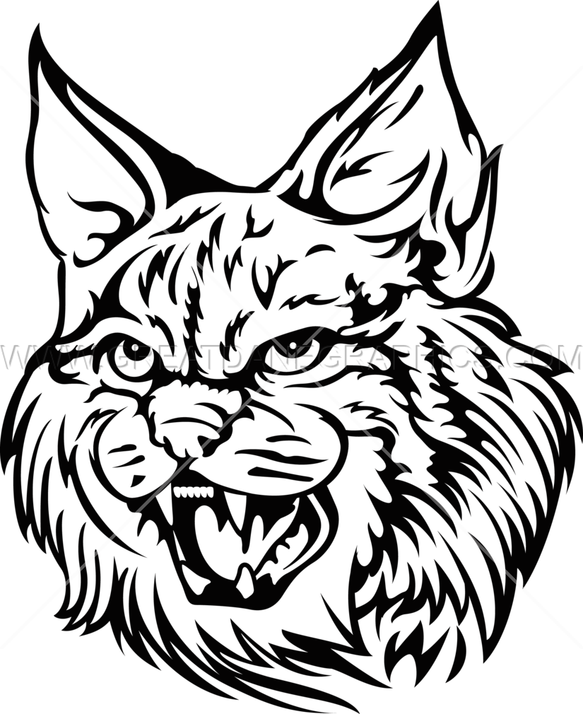 Wildcat clipart drawing. Production ready artwork for