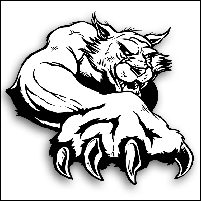 Free paw download clip. Wildcat clipart drawing