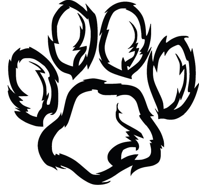 Cwu logos clip art. Wildcat clipart face