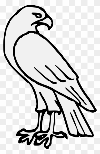 Pdf easy drawing full. Wildcat clipart falcon