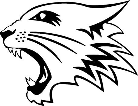 Wildcat clipart head. Free mascot download clip