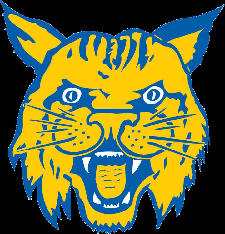 The miller city wildcats. Wildcat clipart head
