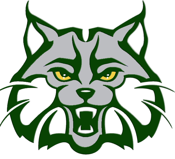 Indian trail middle school. Wildcat clipart head