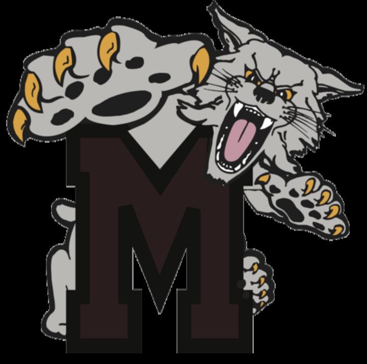 The mechanicsburg wildcats scorestream. Wildcat clipart jaguar