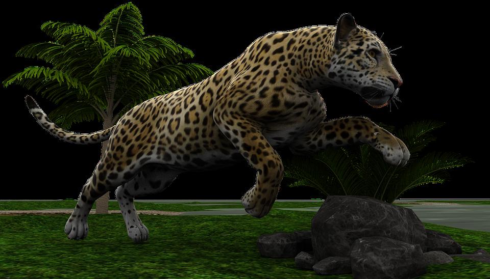 Wildcat clipart jaguar. Cars leopard hunt png
