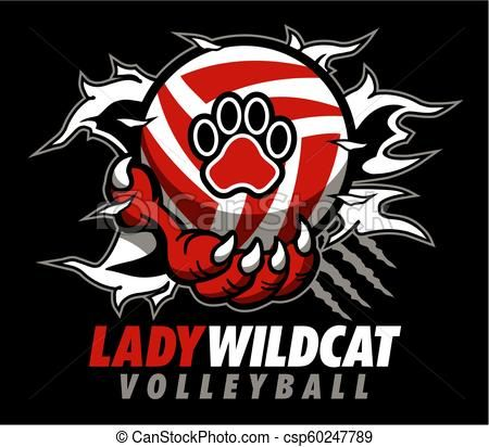Wildcat clipart lady. Volleyball vector stock illustration