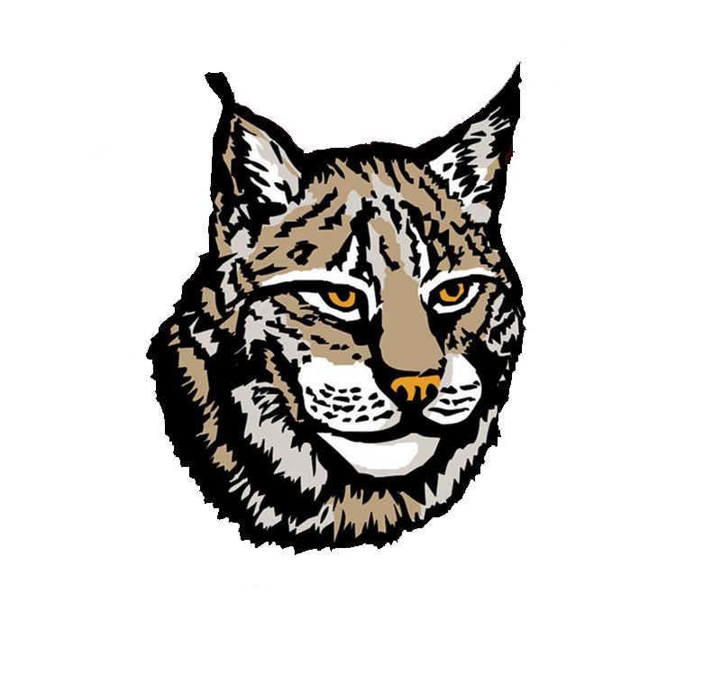 Png transparent images group. Wildcat clipart lynx