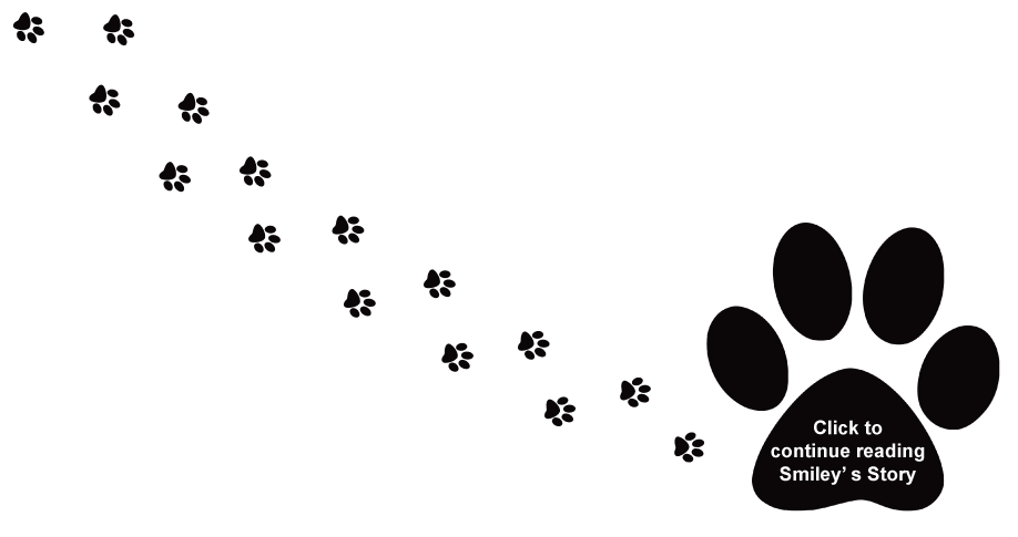 Dog trail free download. Wildcat clipart paw print