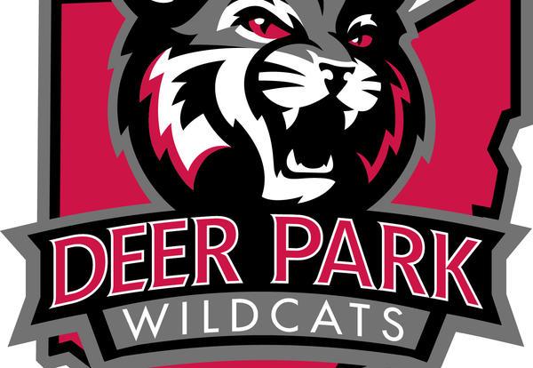 Dp basketball wear pickup. Wildcat clipart school spirit