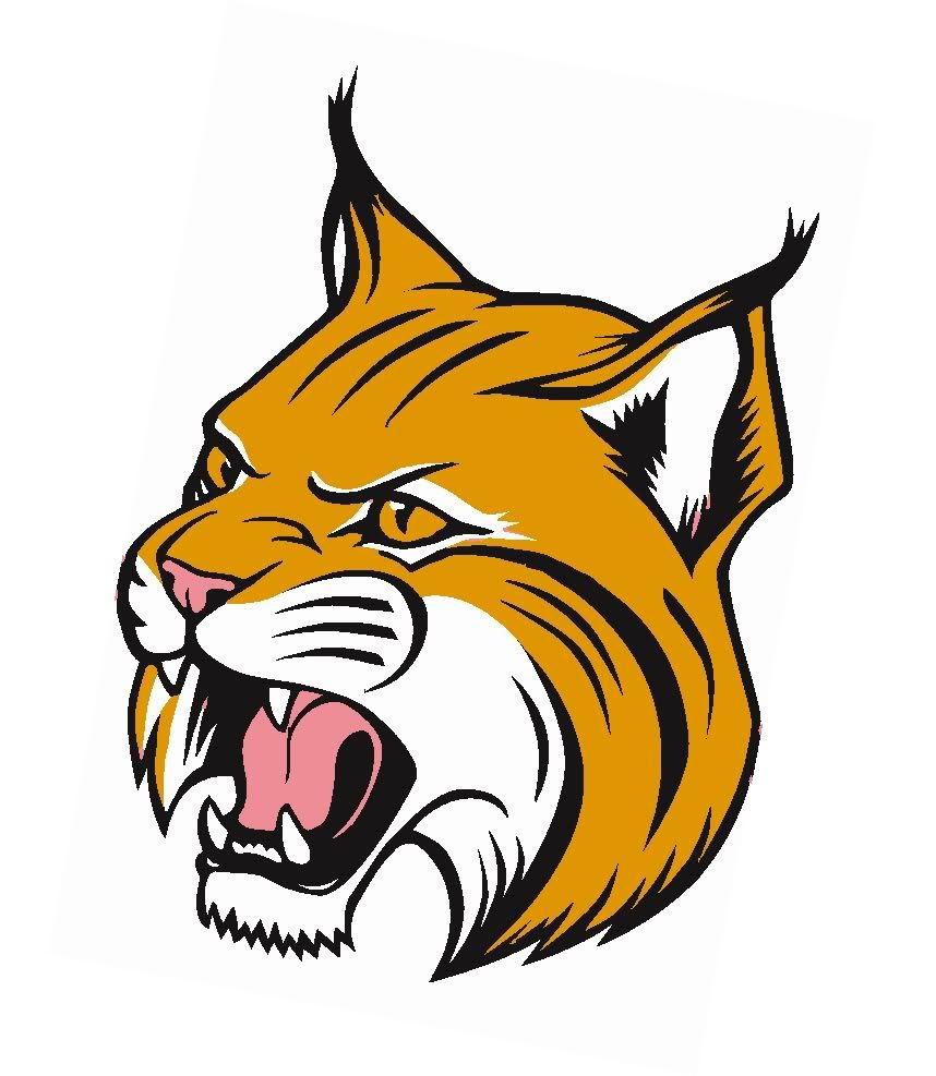 Wildcat clipart school spirit. Free mascot needed t