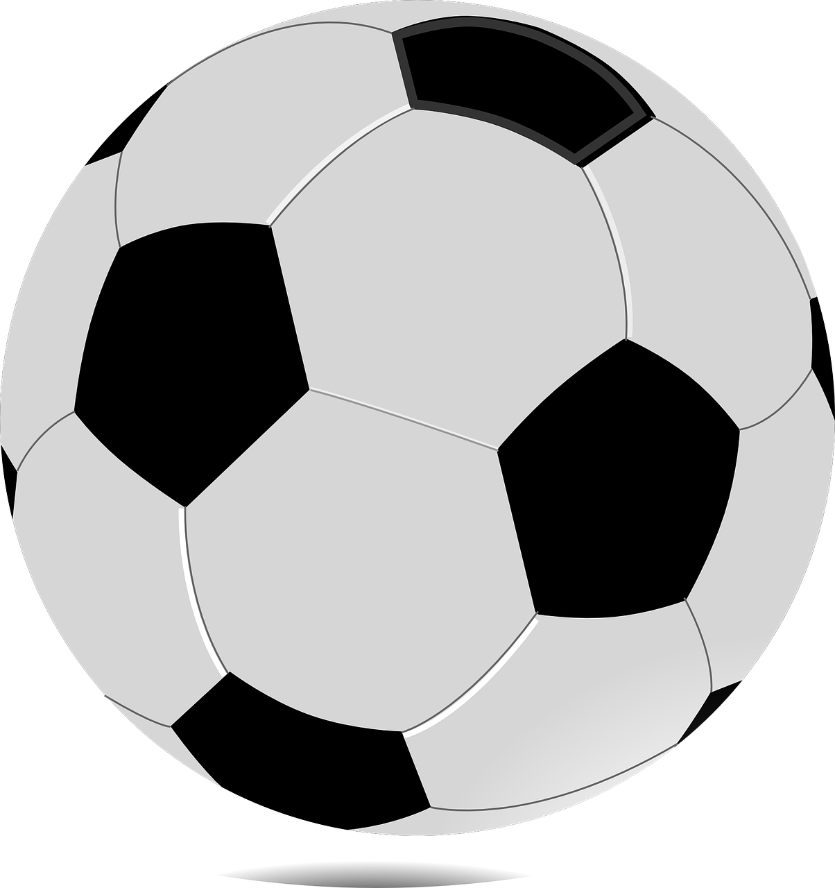 Paris isd summer sports. Wildcat clipart soccer