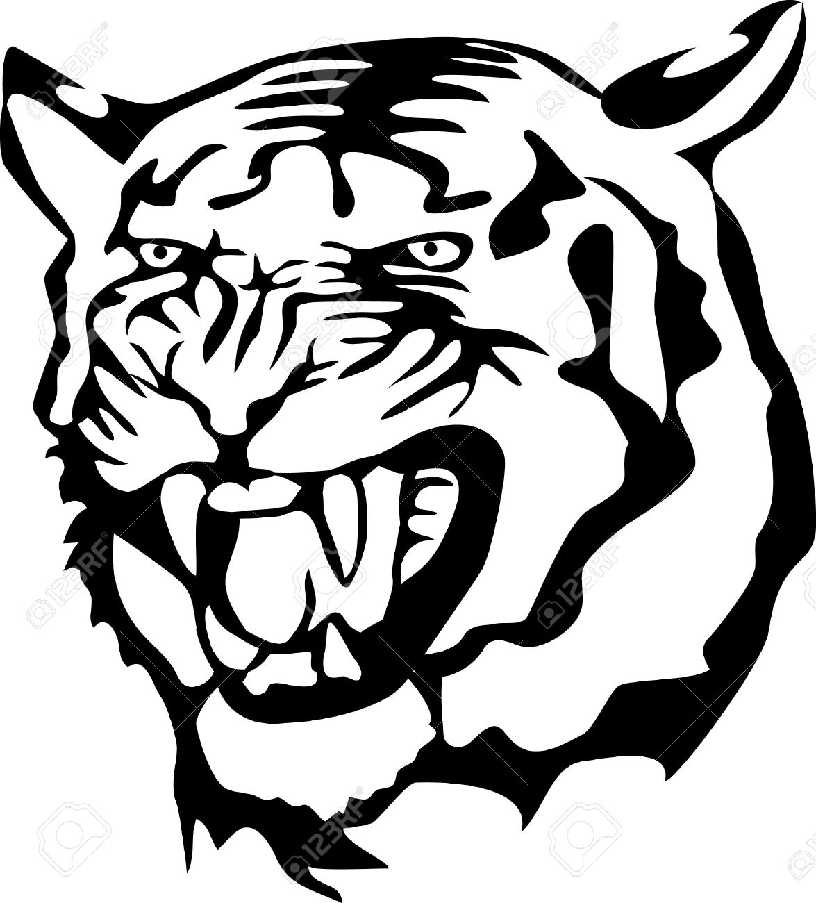Wildcat clipart vector. Collection of free download