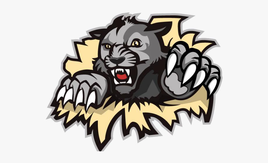 Wildcat clipart west shore. Wildcats logo