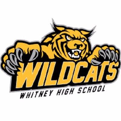 X free clip art. Wildcat clipart whitney