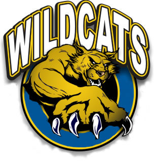 Free cliparts download clip. Wildcat clipart wild cat