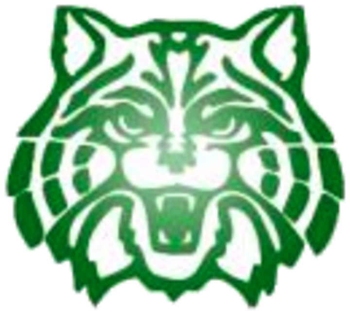 The plainfield central wildcats. Wildcat clipart wildcat cub