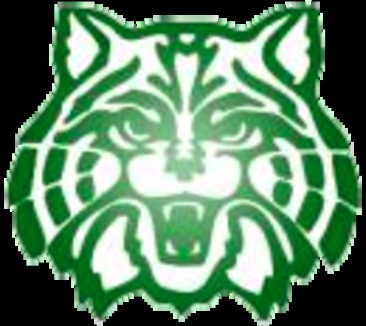 wildcat clipart wildcat cub