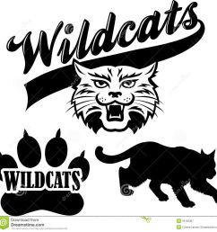 Wildcat clipart wildcat cub. Free enterprise
