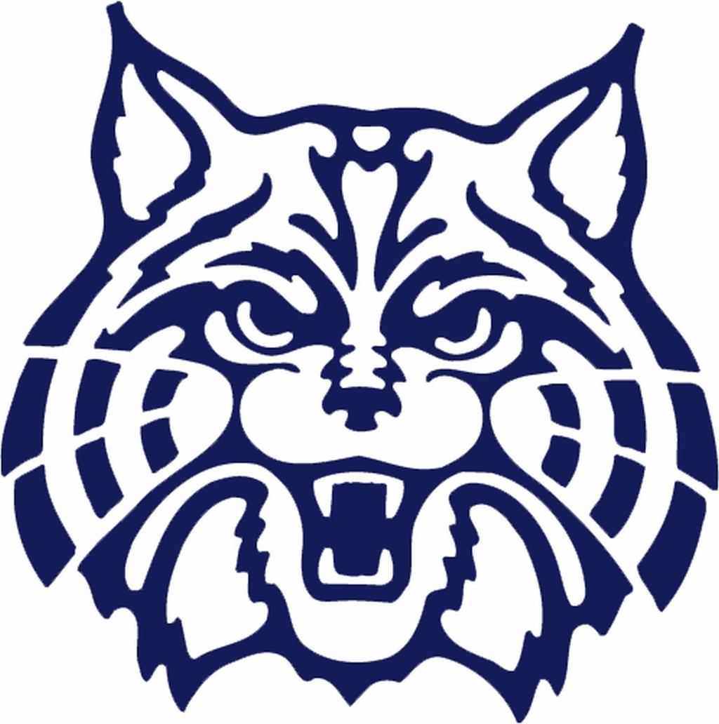 clipartlook. Wildcat clipart wildcats arizona