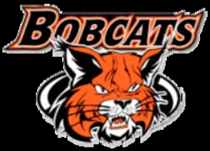 The wildcats vs beecher. Wildcat clipart wilmington