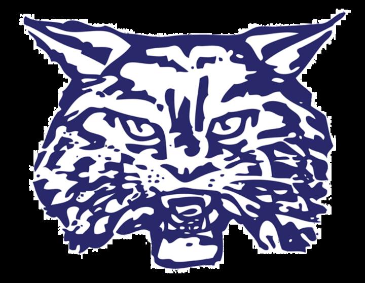 The wildcats defeat farmington. Wildcat clipart wilmington