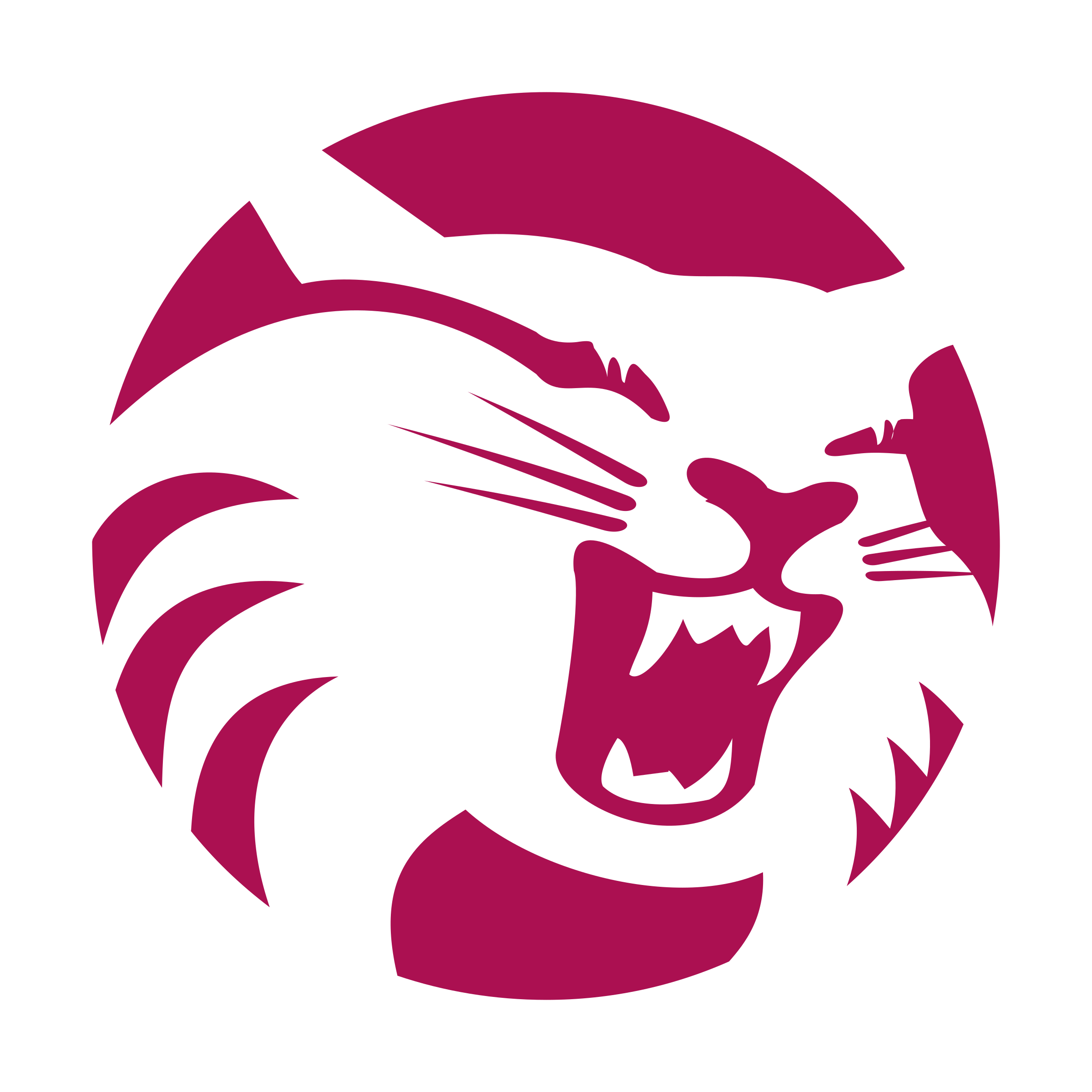 Wildcat clipart wolverine. Athletics logo png transparent