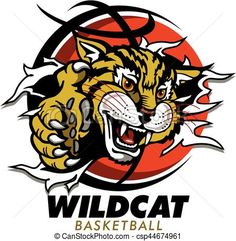 Collection of free download. Wildcat clipart word