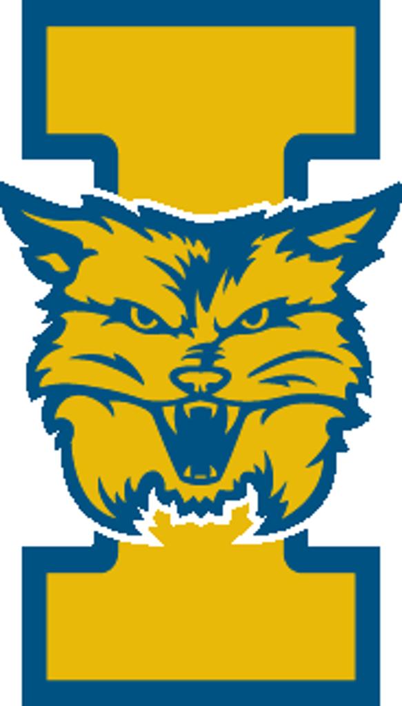 Wildcat clipart yellow. Inside athletics saint ignatius