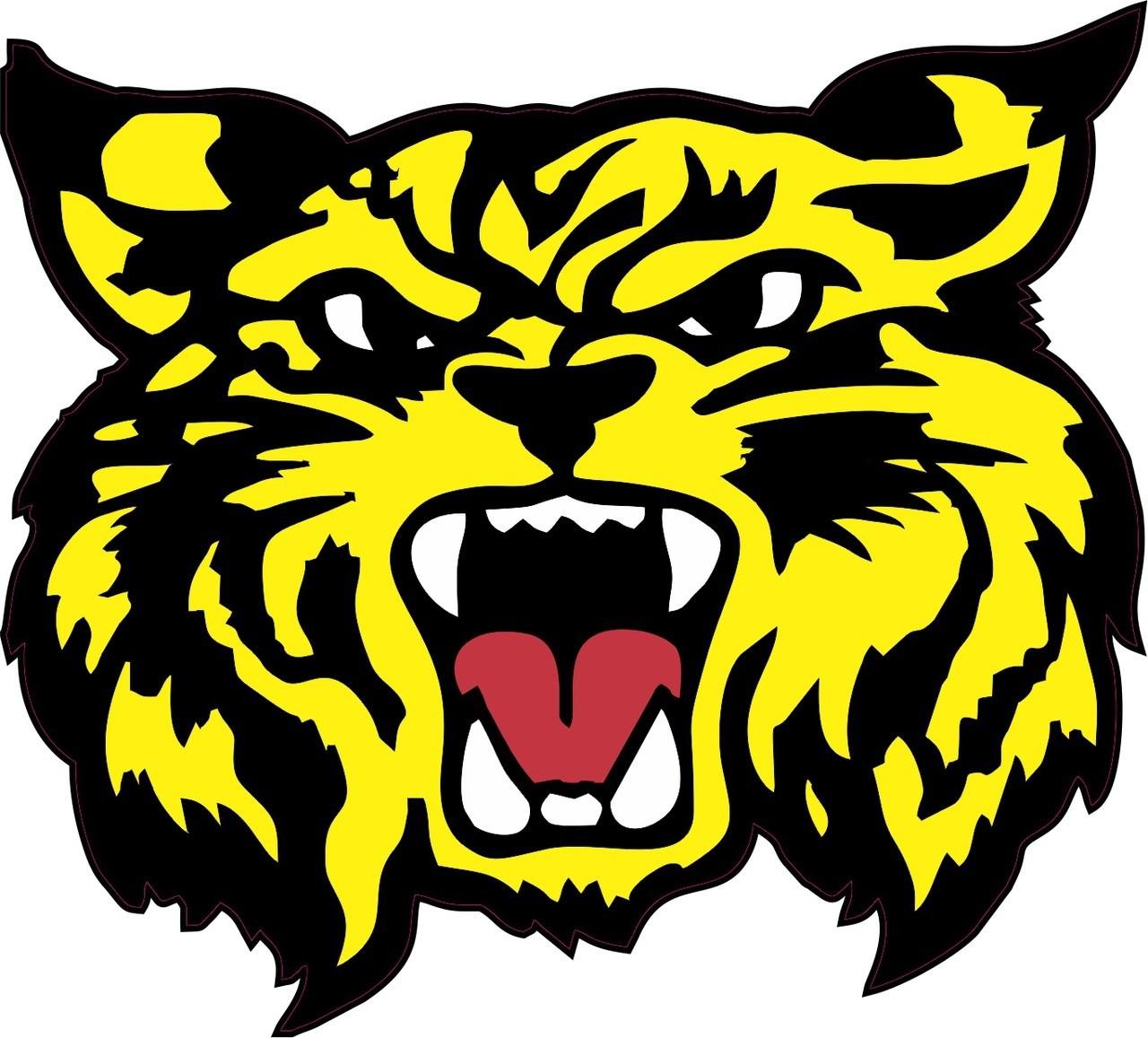 in x mascot. Wildcat clipart yellow