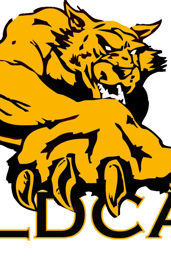 Wildcat clipart yellow. Madill fooball vs tishomingo
