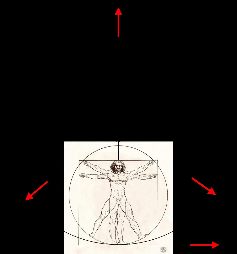 Windy clipart centripetal force. Artificial gravity born for