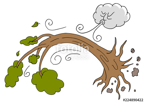 Tree uprooted day cloud. Windy clipart hurricane wind