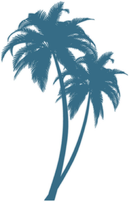 Turquoise tattoo pinterest and. Windy clipart palm tree