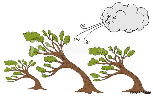 Windy clipart wind blown tree. Fluffy trees and cloud