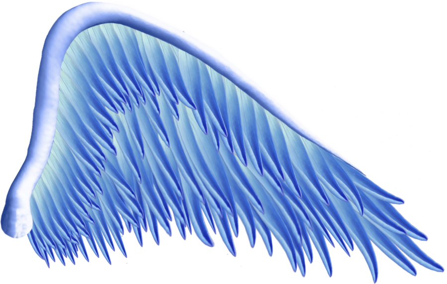 Wing clipart angel wing. Blue png by thy