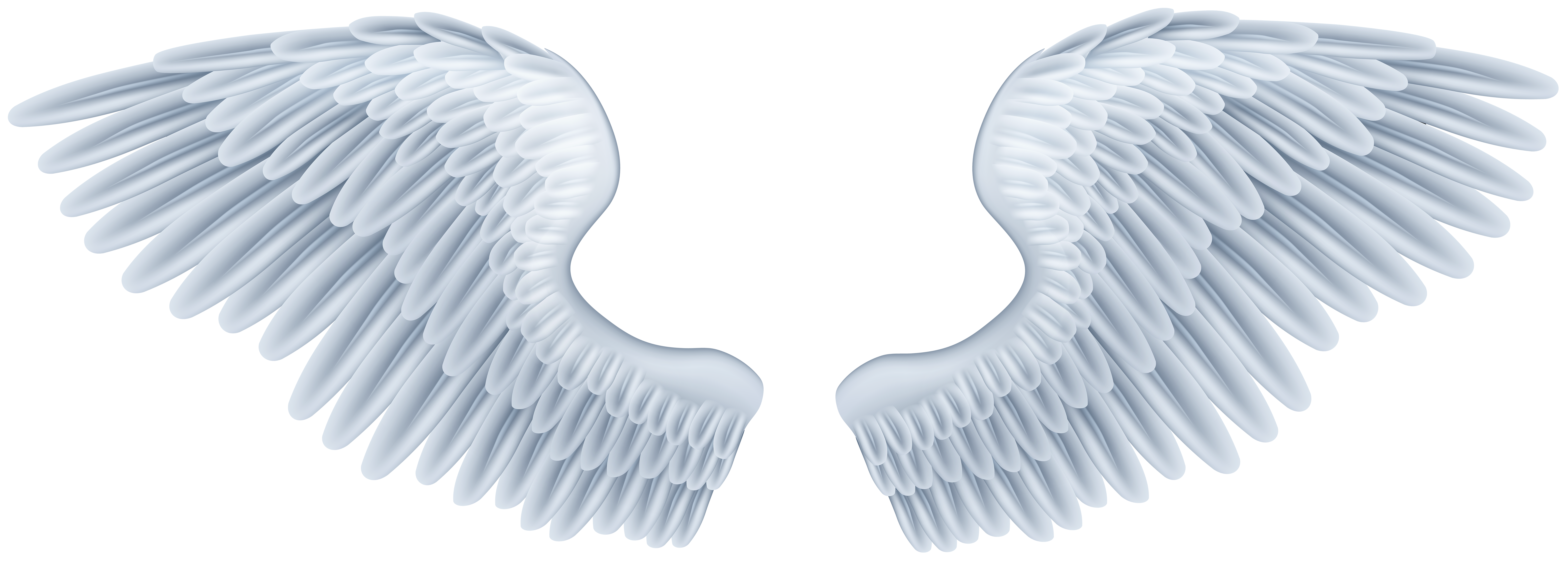 Wing clipart angel wing. Wings png clip art