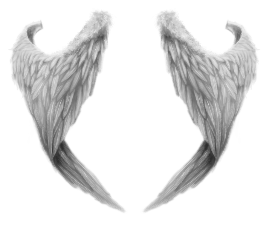 Wing clipart angel's wing. Fantasy angel wings transparent