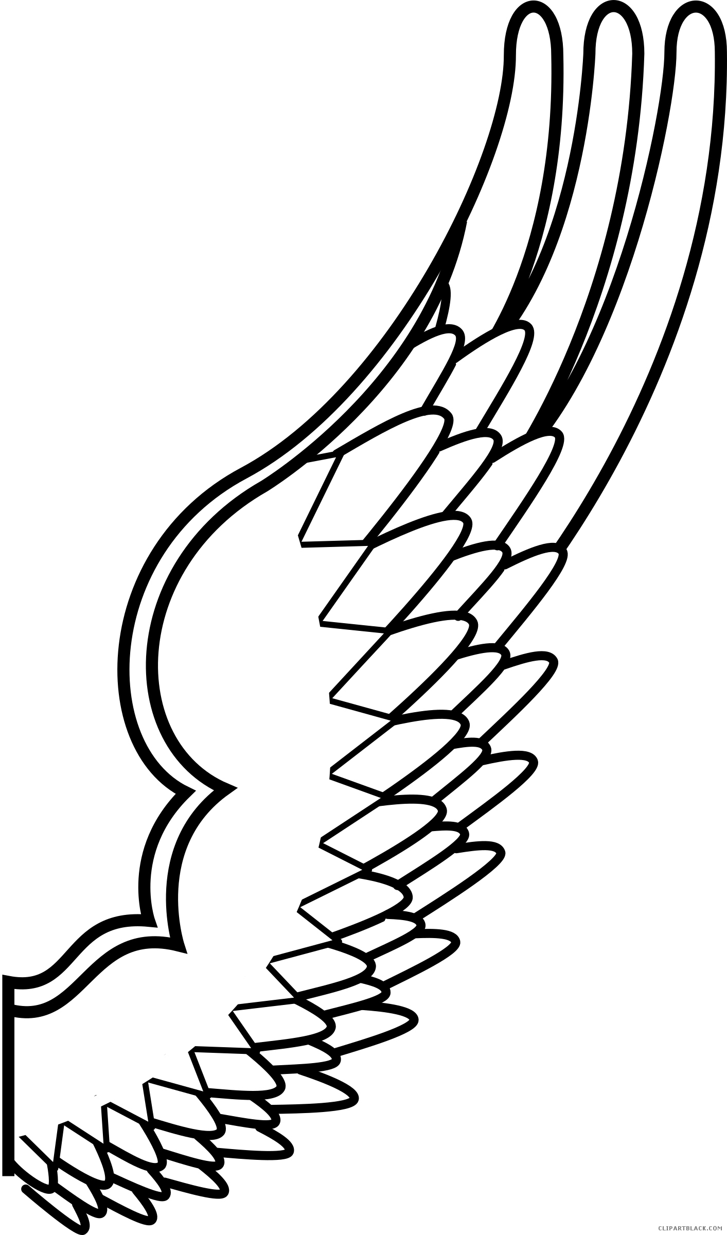 Wing clipart black and white. Bird wings clipartblack com